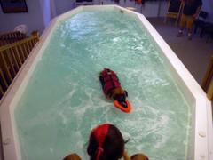 fitness-swim